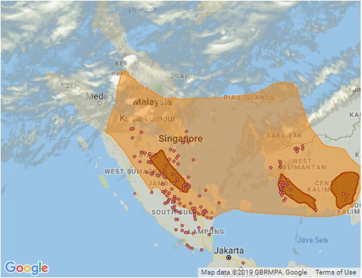 "A map of the fire ""hotspots"" in Southeast Asia which are likely responsible for the haze of air pollution around the region on 18 September 2019. Credit: Singapore's National Environment Agency."