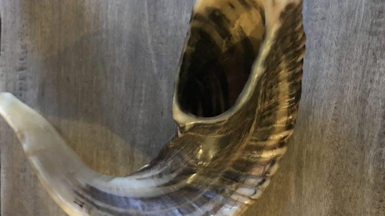A shofar, or ram's horn, used as a call to prayer